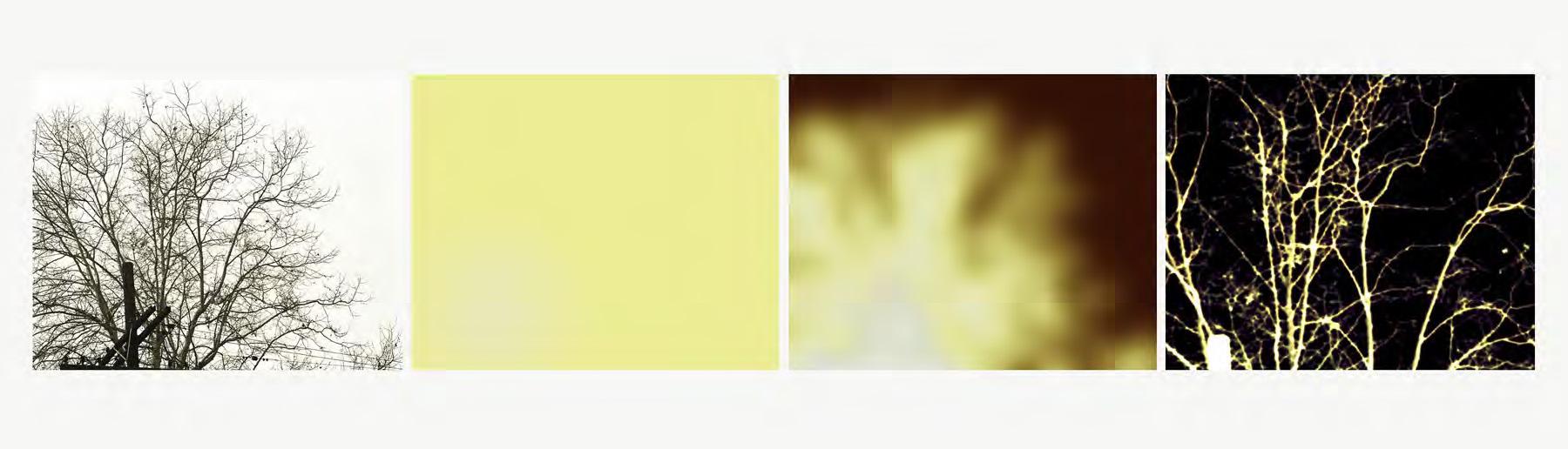 Uta Barth white blind (bright red) (02.12) 2002 fa...