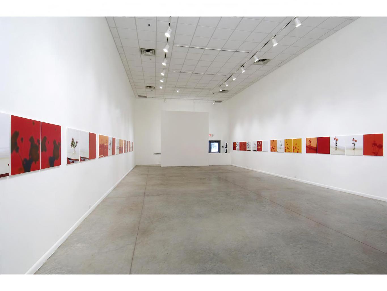 Uta Barth - Artworks - Artists