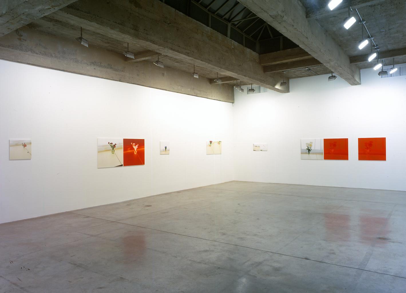 Installation view Tanya Bonakdar Gallery, 2005...