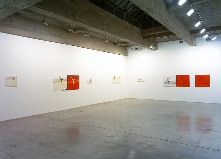 Installation view Tanya Bonakdar Gallery, 2005...