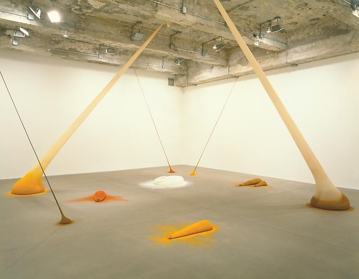 Ernesto Neto - Exhibitions
