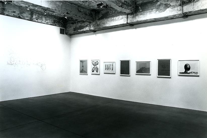 1 - 29 June 1996 - Drawings - Charles Long - Exhibitions