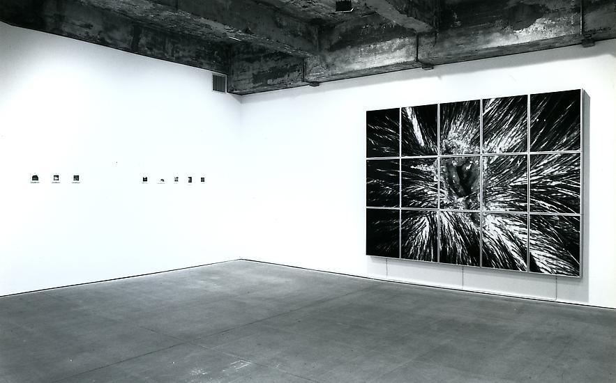 19 November - 31 December 1994 - Group Exhibition - Nature Morte - Exhibitions